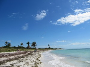 Bahia Honda State Park keeps their beaches natural.
